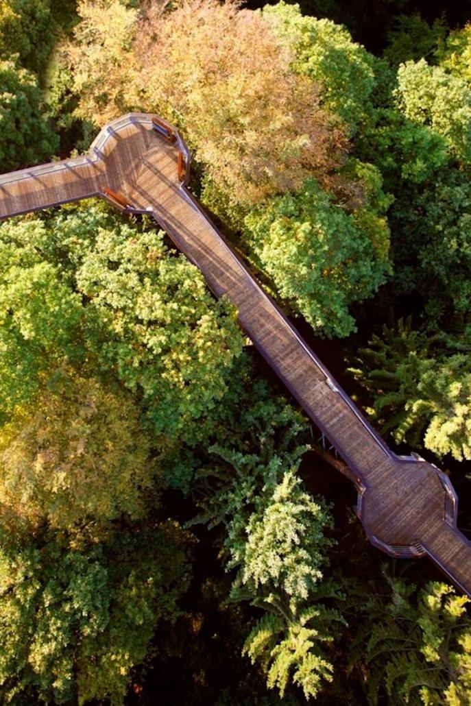 Luftbild Panarbora